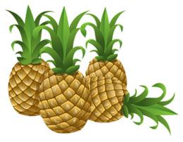 L'ananas, pour être frais cet été !