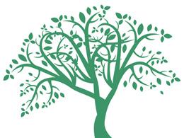 L'arbre de vie, symbole qui lie le ciel et la terre.