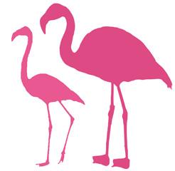 Le flamant rose, à la fois glamour et tendance.